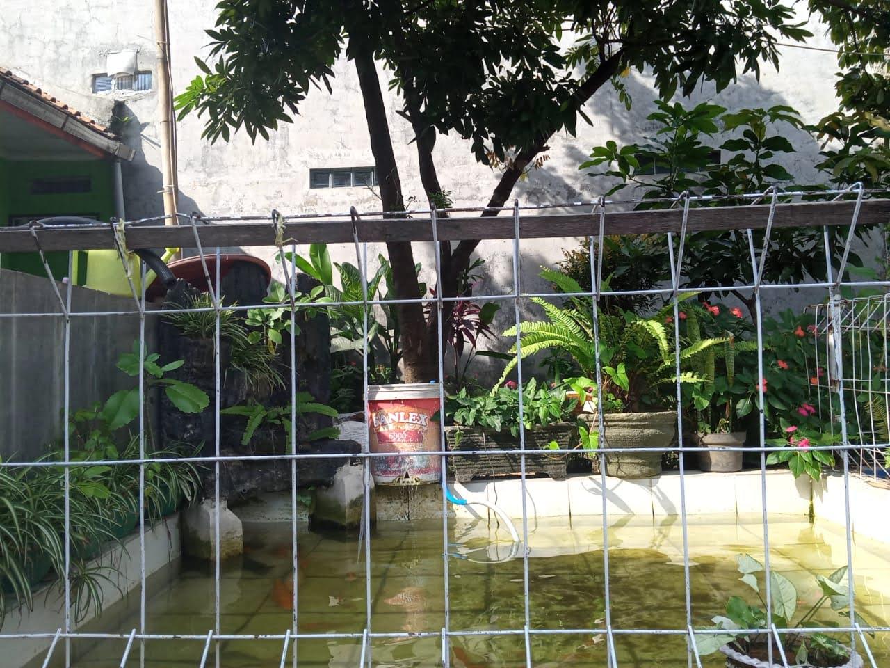 Foto Kolam Ikan di Samping Teras Taman